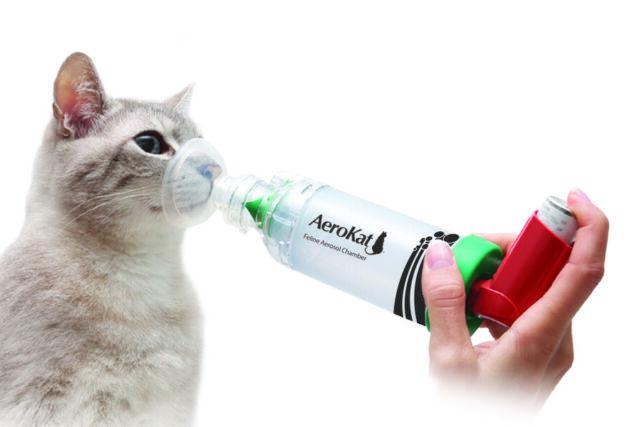 Hoe kan ik de Aerokat gebruiken?